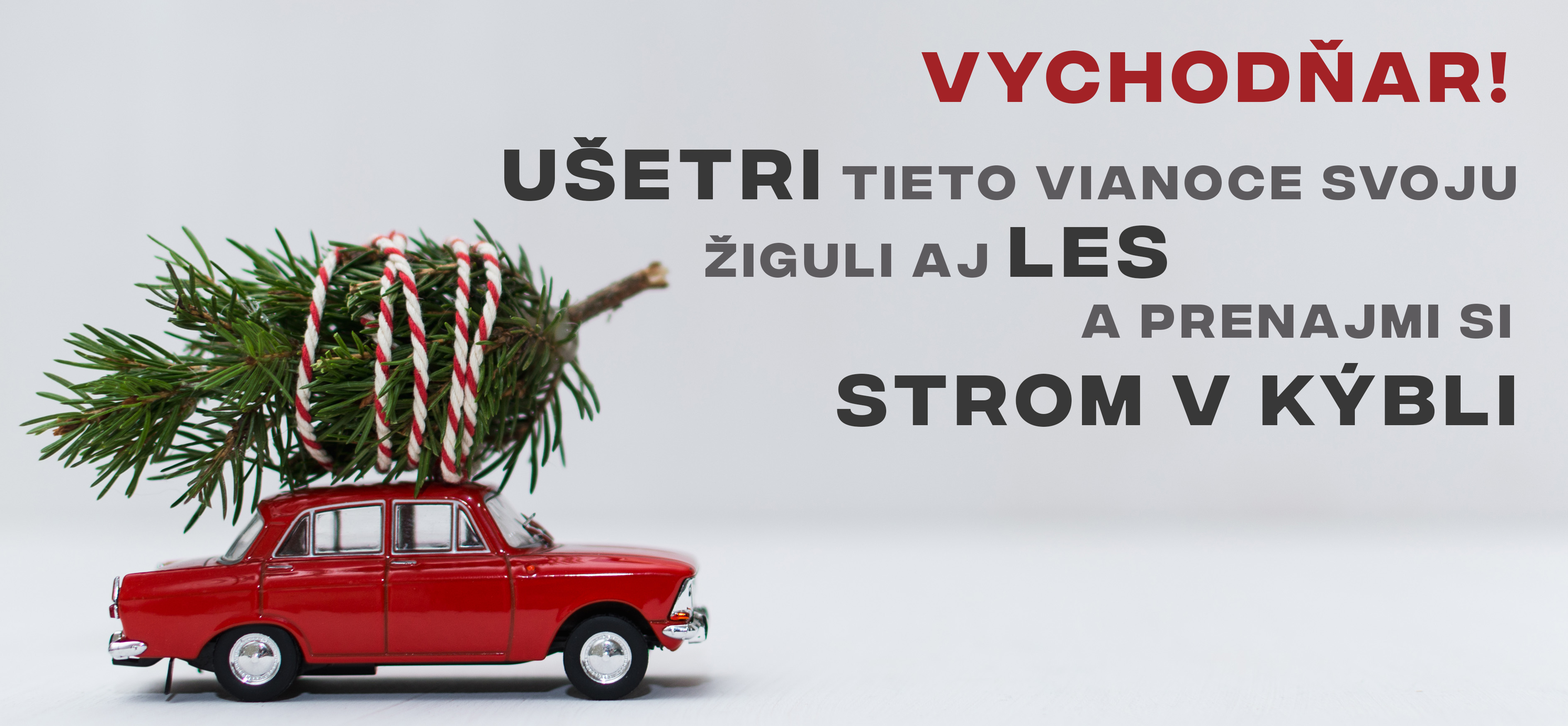 Vianocny_strom_v_kybli_a_ziguli