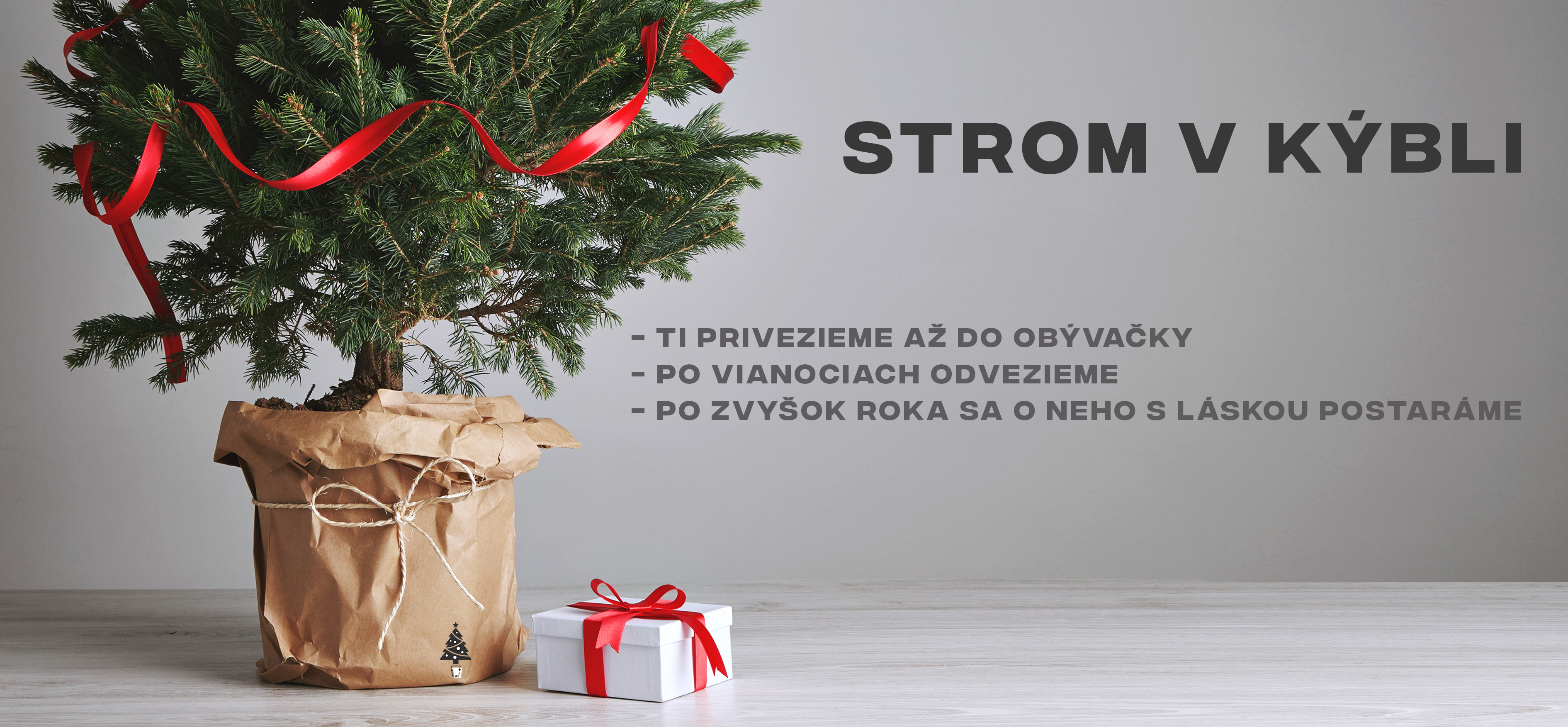 Vianocny_strom_v_kybli