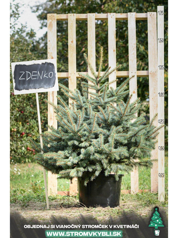 Vianocny stromcek v kvetinaci stromvkybli Zdenko 9418 3 2 3 3