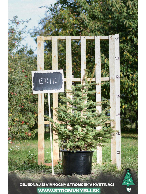 Vianocny stromcek v kvetinaci stromvkybli Erik 9322 3 2 3 3