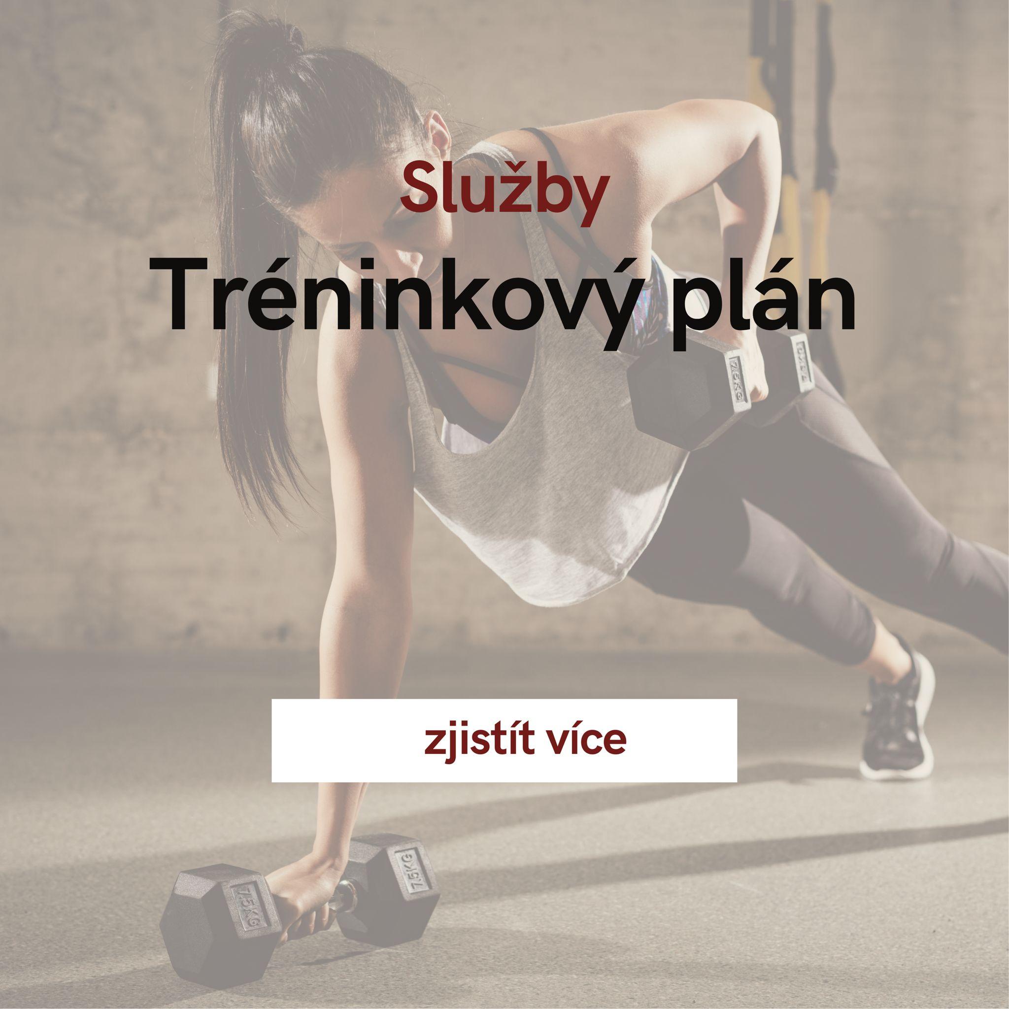 Tréninkové plány