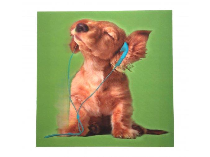 pes sluchátka