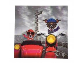 pes na motorce