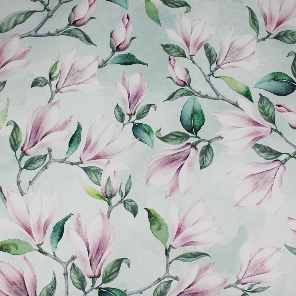 magnolie růžové