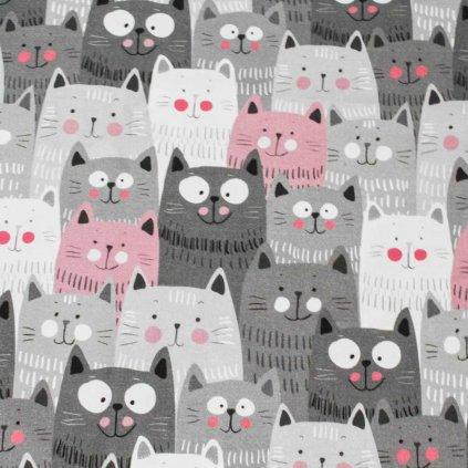 Bavlněná látka PREMIUM - koťata