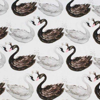 Bavlněná látka PREMIUM - labutě