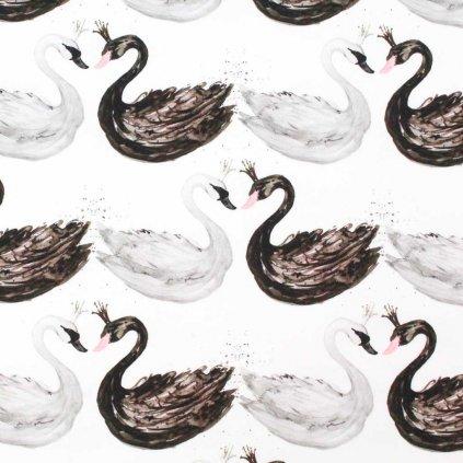Teplákovina - labutě