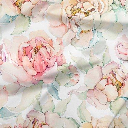 růže na bílé