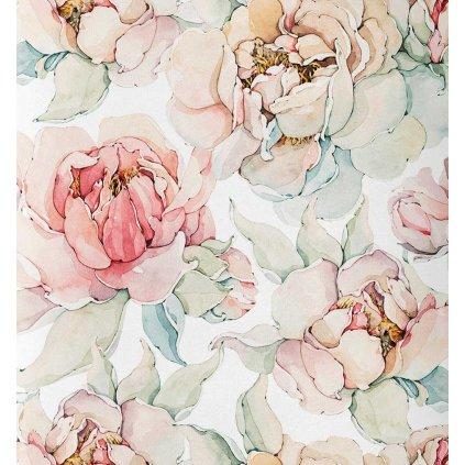 růže na bílé kočárkovina