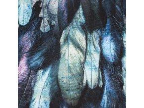 Kočárkovina - Peříčka modrá