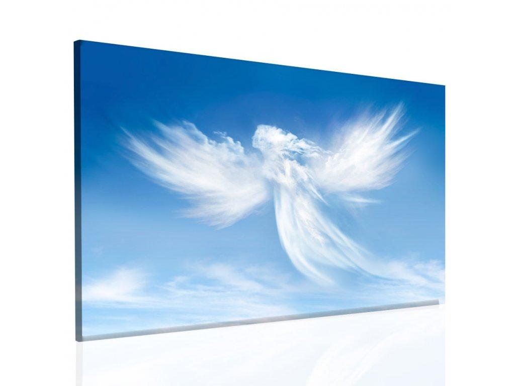 Andělské zjevení (Velikost (šířka x výška) 45x30 cm)