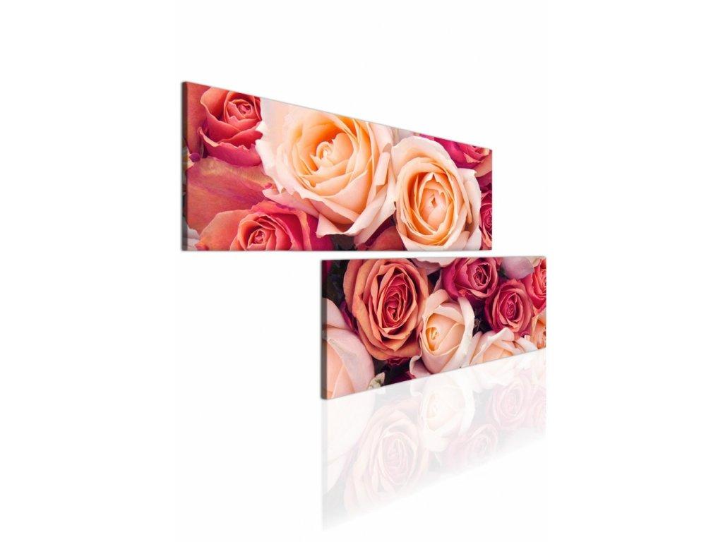Atypický obraz růže (Velikost (šířka x výška) 180x90 cm)