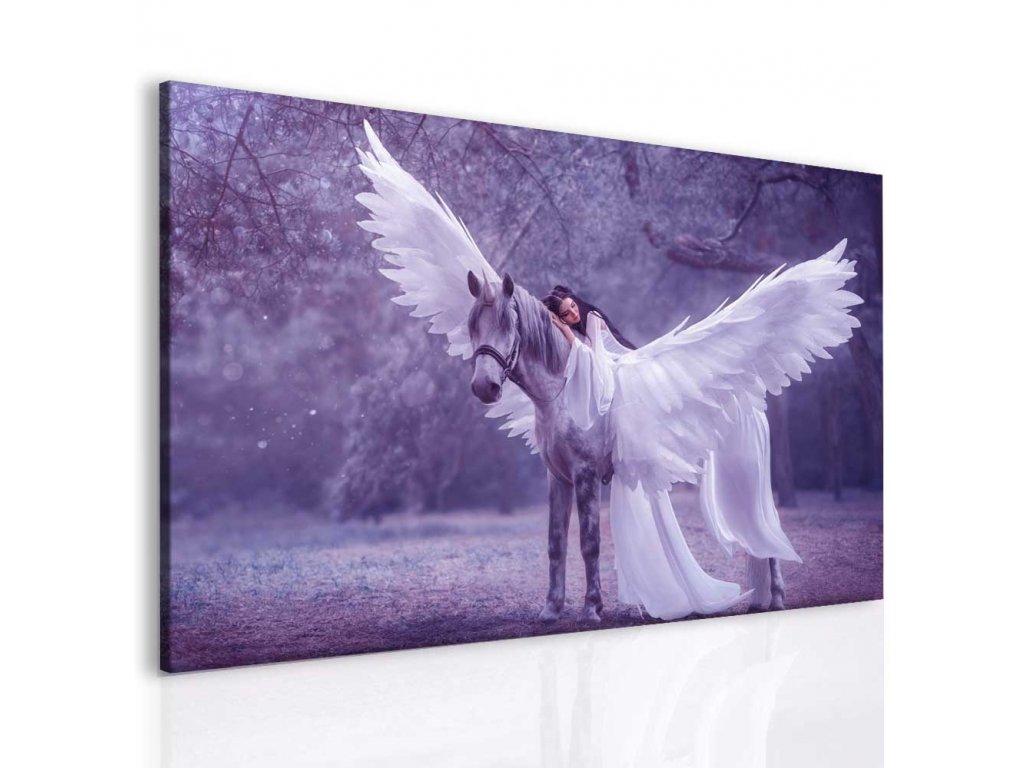 Fantasy pegas a láska I (Velikost 40x30 cm)