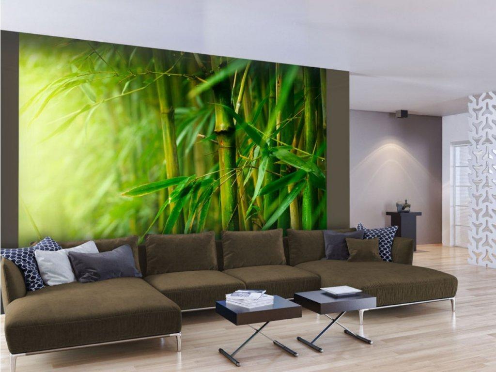 Fototapeta bambus (Rozměry (š x v) a Typ 147x116 cm - samolepící)