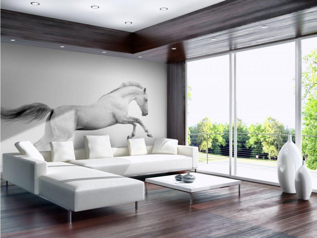 Fototapeta Bílý kůň (Rozměry (š x v) a Typ 147x116 cm - samolepící)