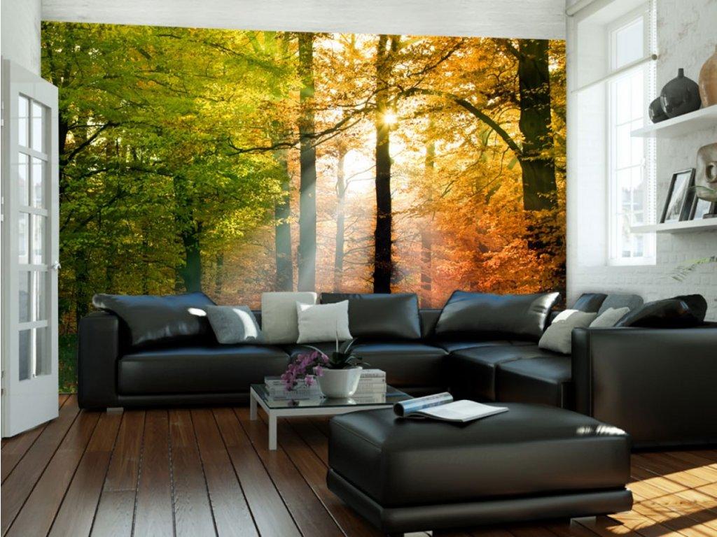 Fototapeta podzimní zabarvení (Rozměry (š x v) a Typ 147x116 cm - samolepící)