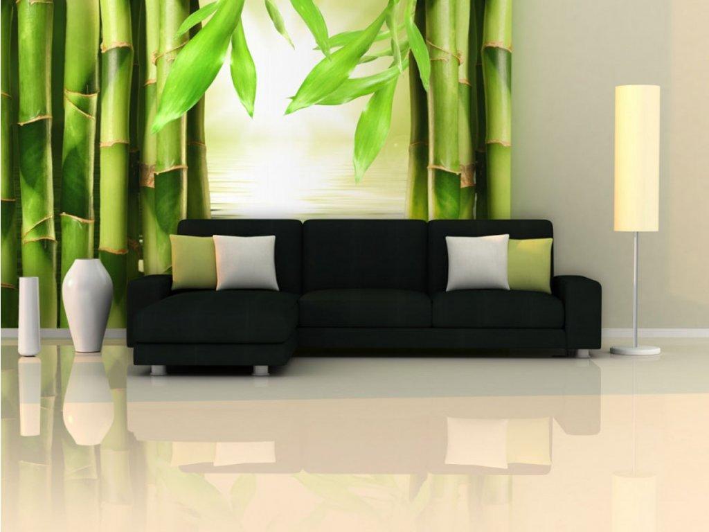 Fototapeta z bambusu (Rozměry (š x v) a Typ 147x116 cm - samolepící)