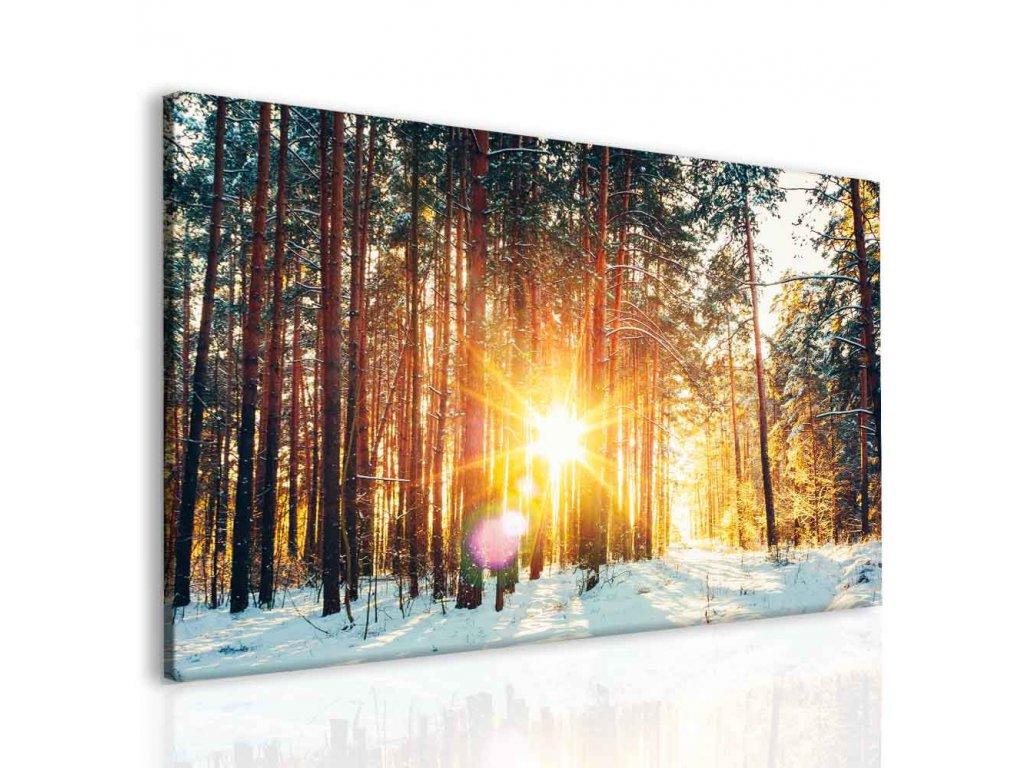 Les - První sníh (Velikost 90x60 cm)