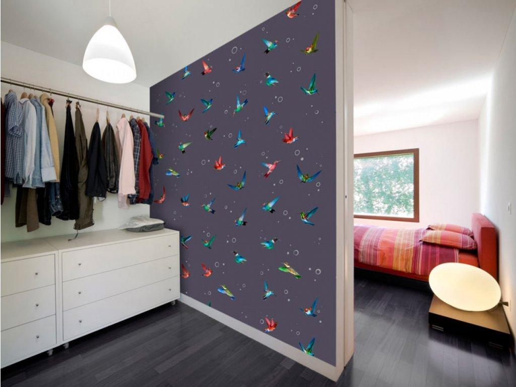 Let kolibříka (Klasické tapety 49x1000 cm - samolepicí)