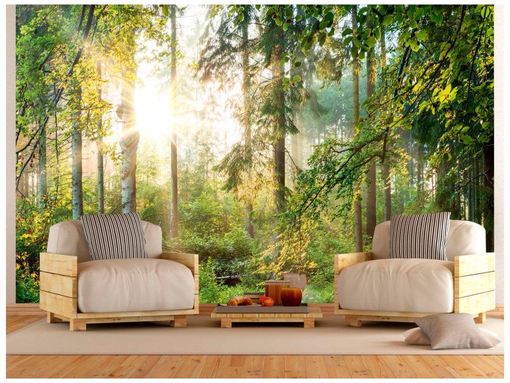 Letní les (Rozměry (š x v) a Typ 147x105 cm - samolepící)