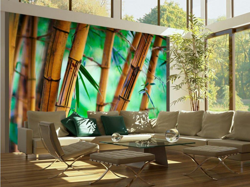 Lodyhy bambusů (Rozměry (š x v) a Typ 147x116 cm - samolepící)