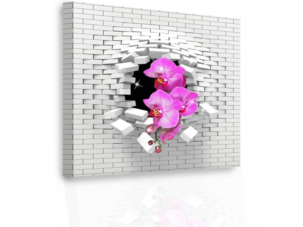 Luxusní obraz - orchidej (Velikost 60x60 cm)