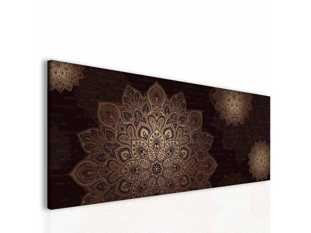 Mandala hnědý obraz (Velikost 150x60 cm)