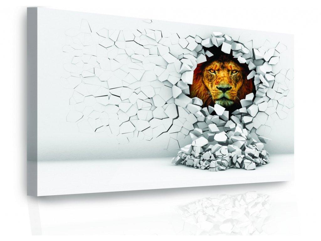 Moderní obraz - lev ve stěně barevný (Velikost 120x80 cm)
