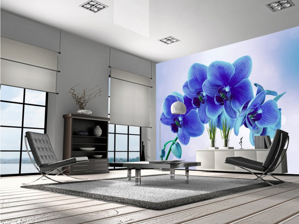 Modrá orchidea (Rozměry (š x v) a Typ 147x105 cm - samolepící)