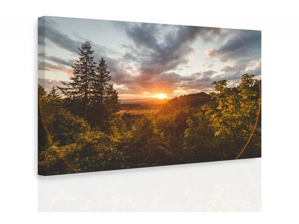 Obraz - Les v horách (Velikost 120x80 cm)