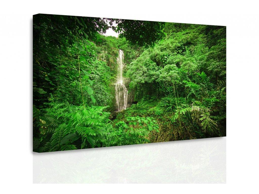 Obraz - Lesní vodopád (Velikost 120x80 cm)