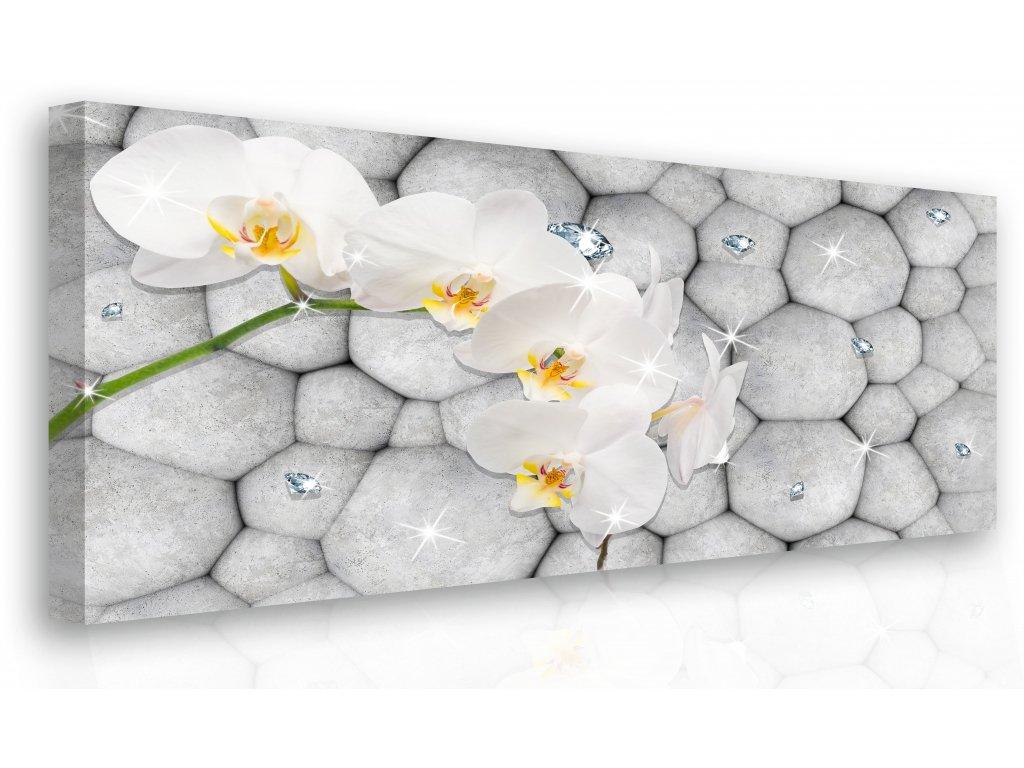 Obraz - orchidej s diamanty (Velikost 120x80 cm)
