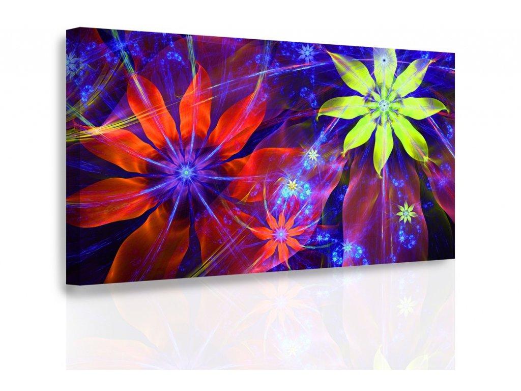 Obraz - Pastelové květiny (Velikost 150x100 cm)