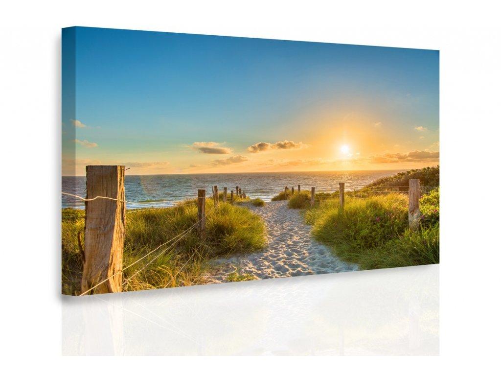 Obraz - Pěšinka na pláž (Velikost (šířka x výška) 120x80 cm)