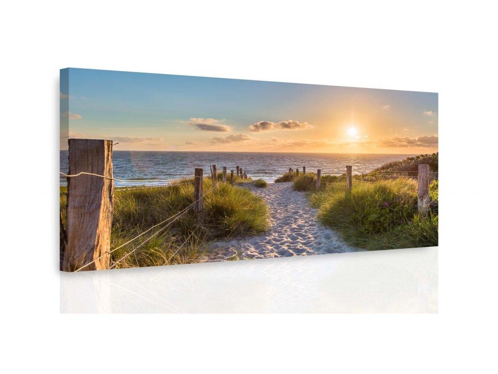 Obraz - Pěšinka na pláži (Velikost 80x40 cm)