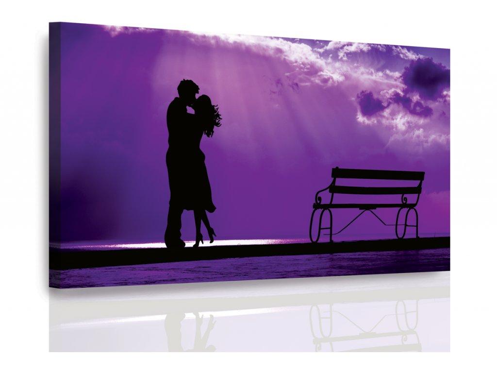 Obraz - Romantika ve fialové (Velikost 120x80 cm)