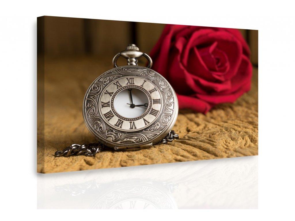 Obraz - Stopky a růže (Velikost 150x100 cm)