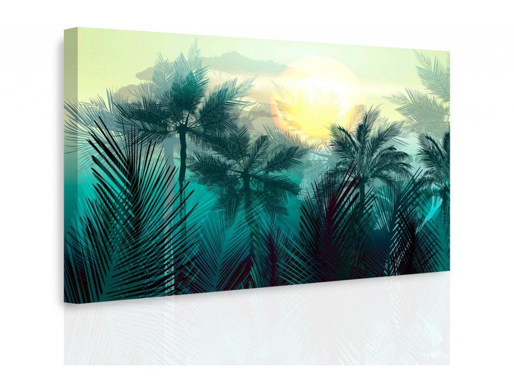 Obraz - Tajemná jungle (Velikost 150x100 cm)
