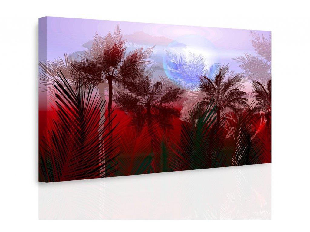 Obraz - Tajemná jungle II. (Velikost 150x100 cm)