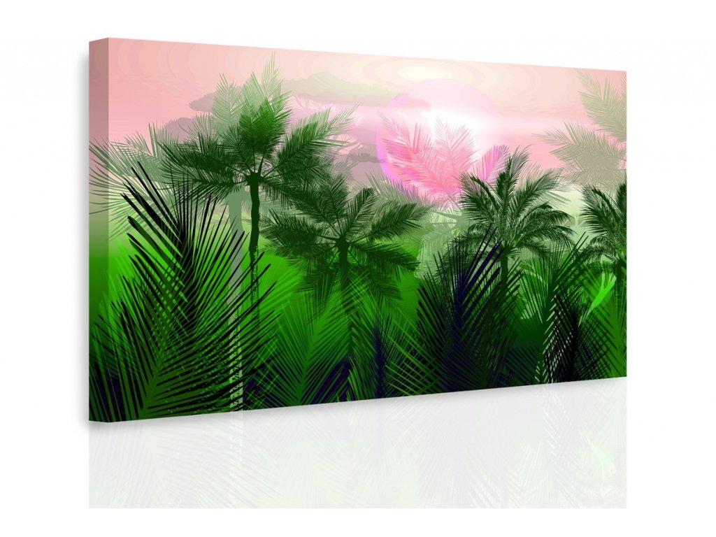 Obraz - Tajemná jungle III. (Velikost 150x100 cm)