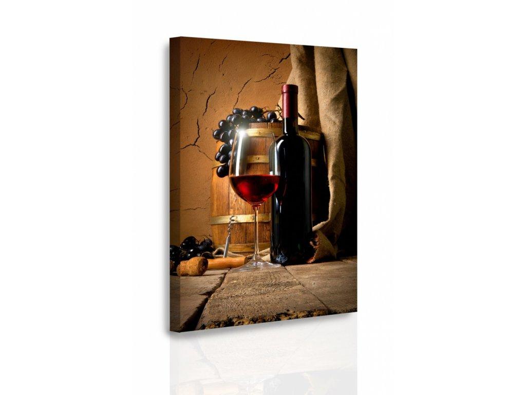 Obraz - Víno (Velikost 80x120 cm)