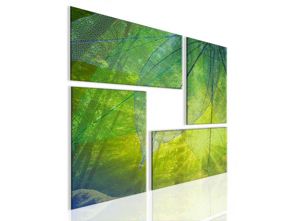 Obraz atypický obraz les (Velikost 80x80 cm)