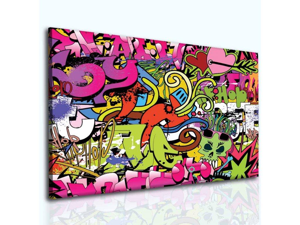 Obraz dívčí graffitti (Velikost 100x80 cm)