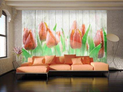 Tapeta červené tulipány na dřevě (Rozměry (š x v) a Typ 147x105 cm - samolepící)