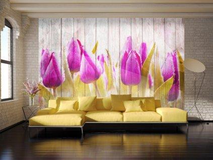 Tapeta fialové tulipány na dřevě (Rozměry (š x v) a Typ 147x105 cm - samolepící)