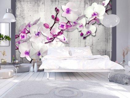 Tapeta kvetoucí orchidej (Rozměry (š x v) a Typ 147x105 cm - samolepící)