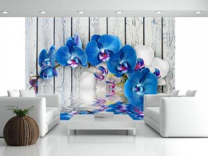 Tapeta modrá orchidej (Rozměry (š x v) a Typ 147x105 cm - samolepící)