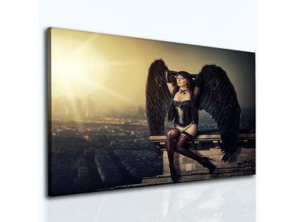 Temný anděl (Velikost (šířka x výška) 100x80 cm)