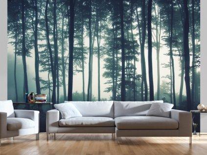 Temný les (Rozměry (š x v) a Typ 147x105 cm - samolepící)