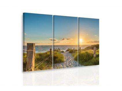 Vícedílný obraz - Pěšinka na pláži (Velikost 120x80 cm)